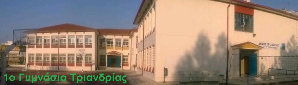 1ο Γυμνάσιο Τριανδρίας